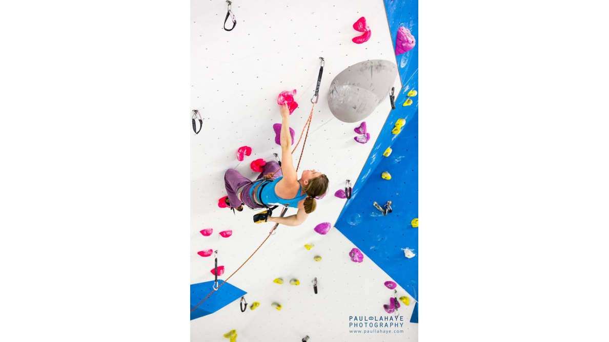 Ivy Climbing